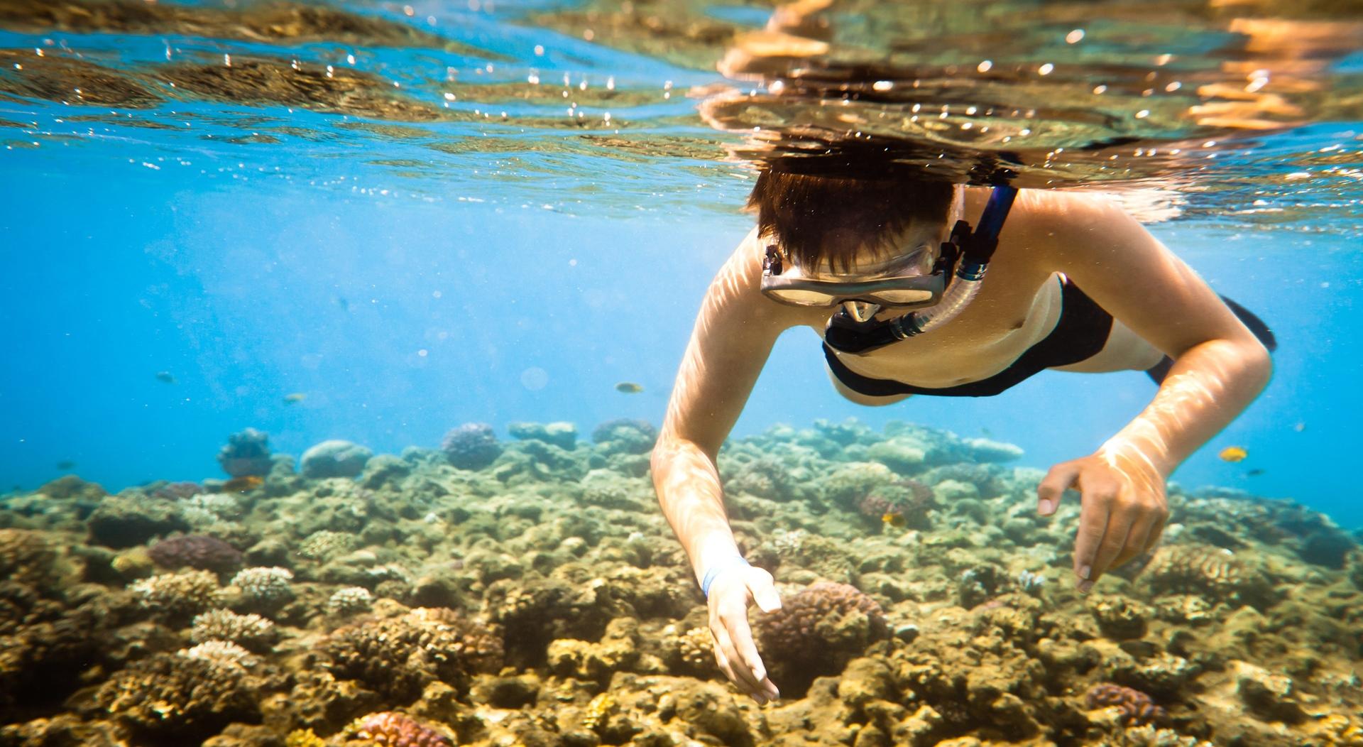 Wisata Snorkeling Lampung